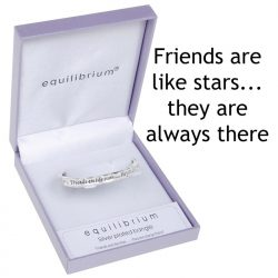 Silver Plated Bangle Friend