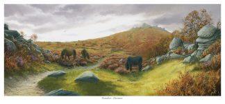 Houndtor - Dartmoor