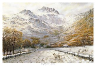 Langdale Winter