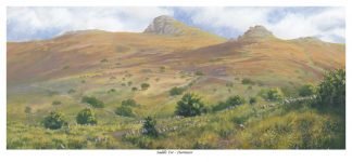 Saddletor - Dartmoor
