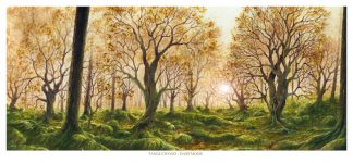 Tanglewood - Dartmoor
