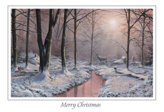 Winters Stream Christmas Card