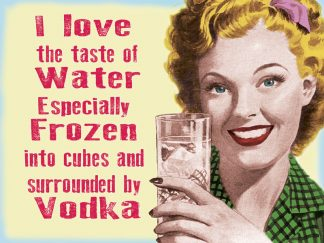 'Vodka Love the taste' Metal Wall Sign