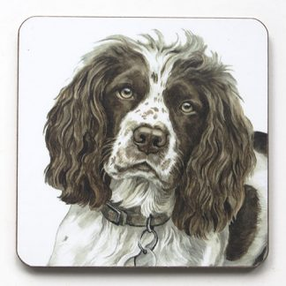 Brown and White Springer Spaniel Coaster