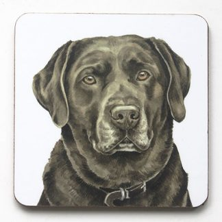 Chocolate Labrador Coaster
