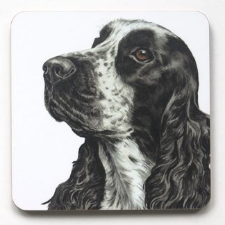 Gazing Cockerspaniel Coaster