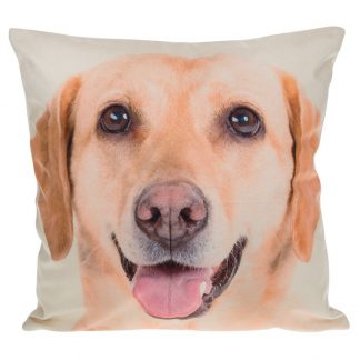 Golden Labrador Mini Cushion