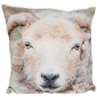 Fluffy Sheep Cushion
